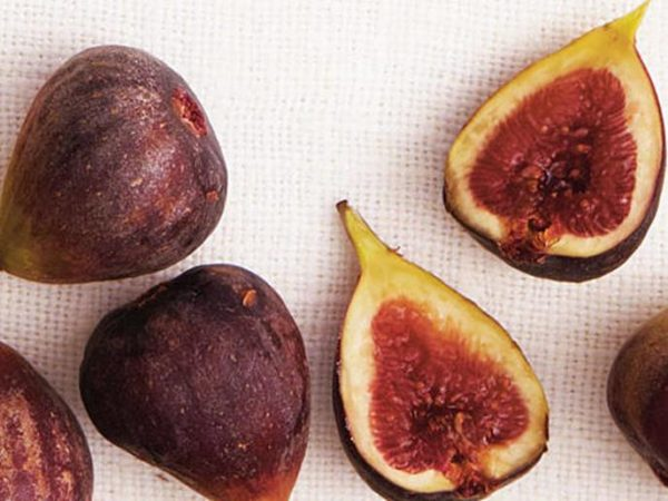 oh3915p34-figs-x