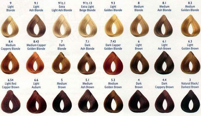 brown-hair-color-chart