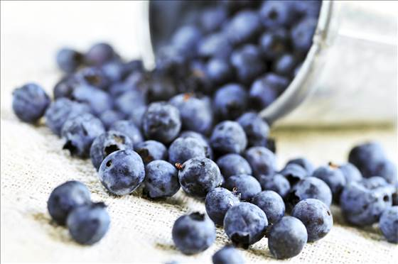 1D274907467053-8c8789740-g-tdy-blueberries.blocks_desktop_medium