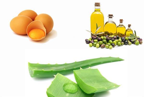 aloe-Vera-egg-olive-oil.