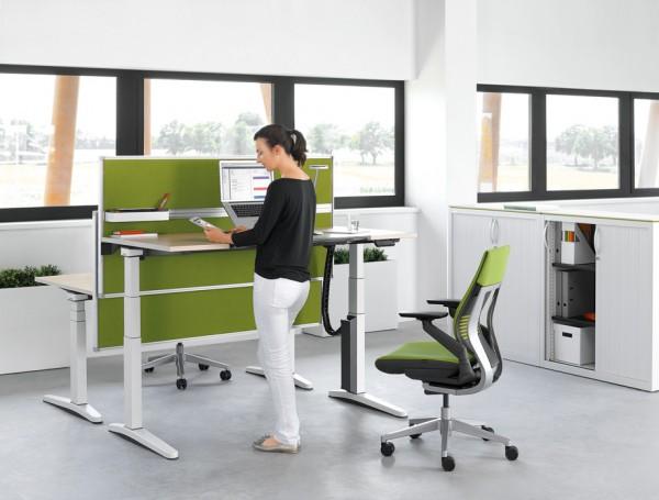 ology-office