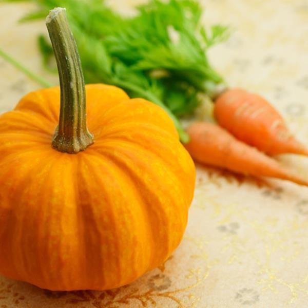 pumpkin-carrots