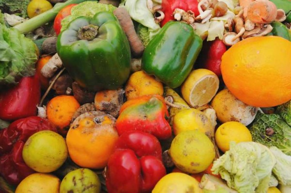 food-waste-09-Oct-11