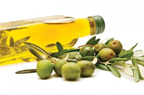 olive-oil-branch