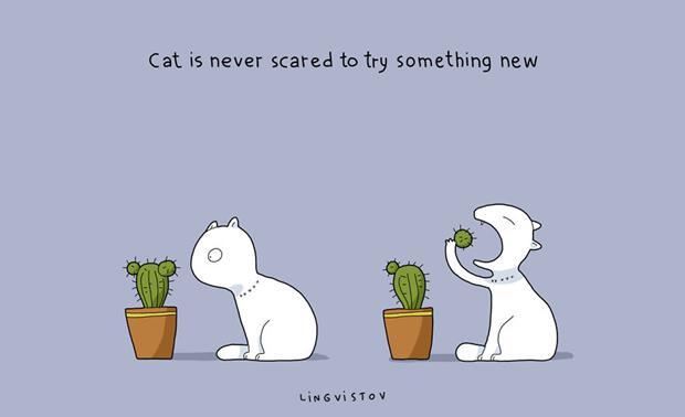 21-Benefits-of-Having-a-Cat-Book21__880