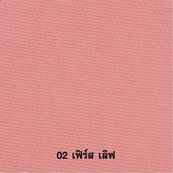229 (Copy)